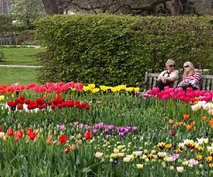 Wisley is the perfect place for a day out this Easter. The garden is bursting into bloom and there's a fun family activity every day. With 7 acres of gardens to explore Wisley is undoubtedly one of the great gardens of the world and is home to some of the